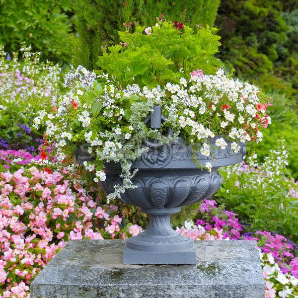 Virágágy kő váza virágok tavasz fű Stock fotó © alinamd