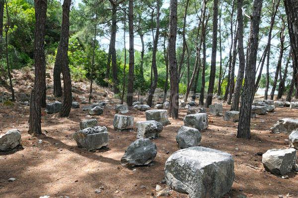 Ruinas antigua ciudad playa cielo forestales Foto stock © alinamd