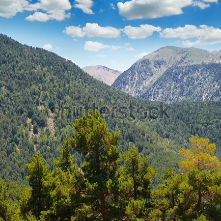 beautiful mountain landscape and sky Stock photo © alinamd