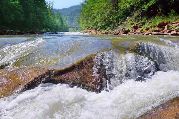 Wodospad rzeki góry drzewo drewna lasu Zdjęcia stock © alinamd