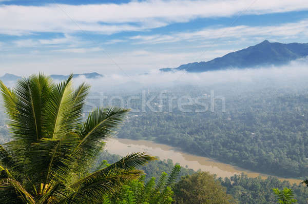 mountain, town and river in the morning mist (top view) Stock photo © alinamd