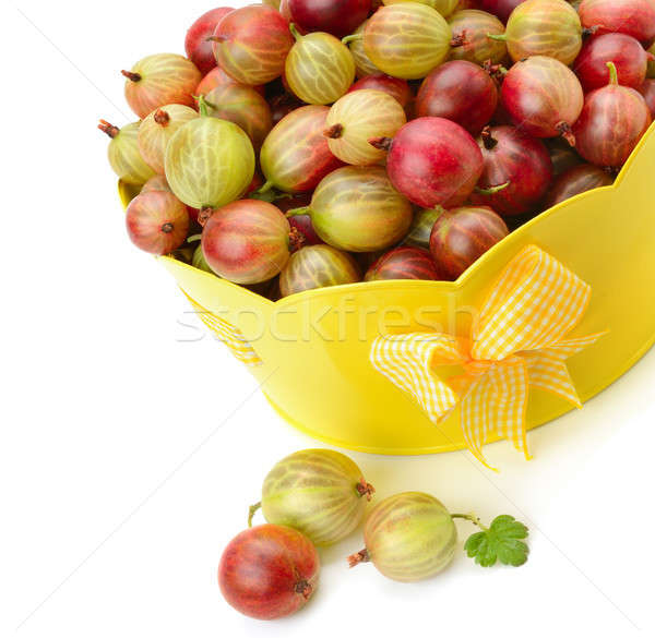 berry of gooseberry isolated on white background Stock photo © alinamd
