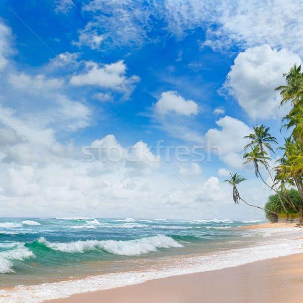 Plaży tropikalnych morza ocean plaża piaszczysta Błękitne niebo Zdjęcia stock © alinamd