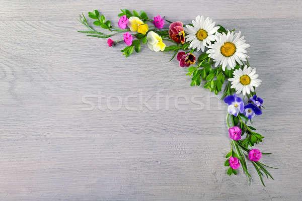 çiçekler üst görmek çerçeve ücretsiz uzay Stok fotoğraf © alinamd
