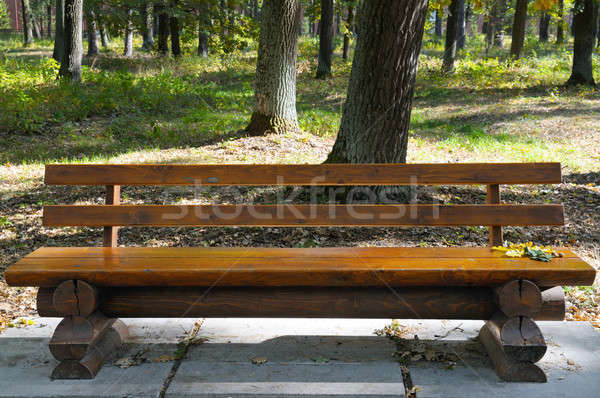 Wooden bench in the autumn park Stock photo © alinamd