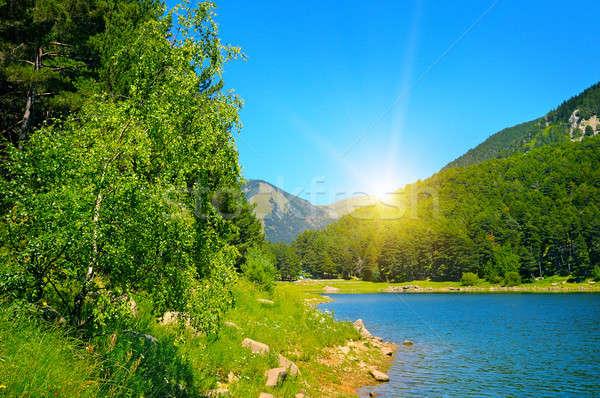 Pintoresco lago montanas cielo azul cielo árbol Foto stock © alinamd