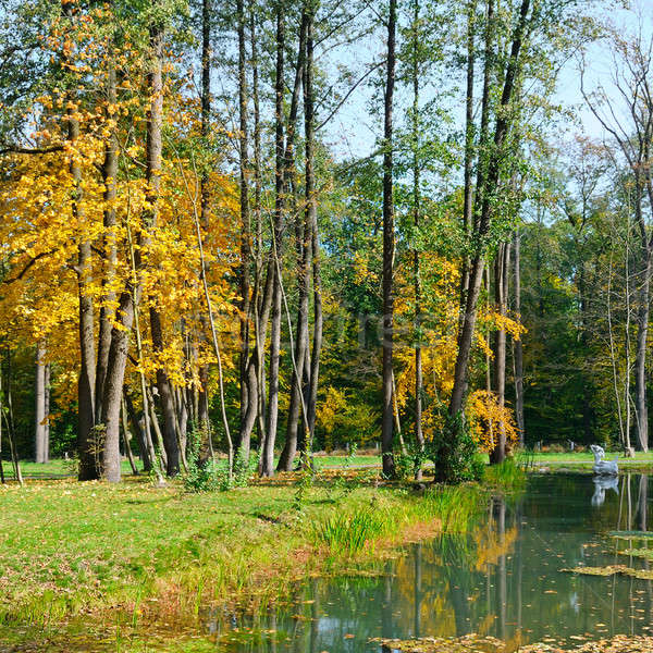 Scenic autumn landscape: park and ornamental lake Stock photo © alinamd