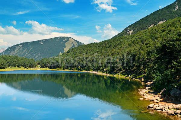 Meer bergen blauwe hemel pittoreske hemel boom Stockfoto © alinamd