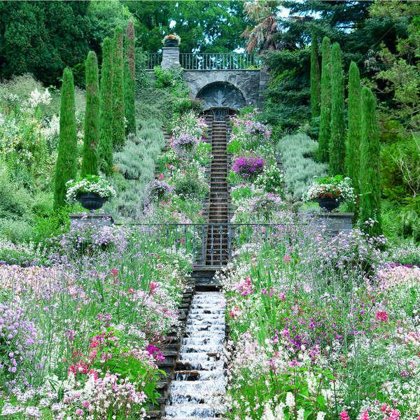 Jardin de fleurs lac printemps nature jardin fond Photo stock © alinamd