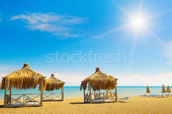 sandy beach, awnings and sunbeds Stock photo © alinamd