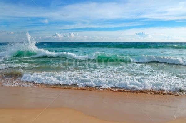 Oceaan zandstrand blauwe hemel tropische hoog golven Stockfoto © alinamd