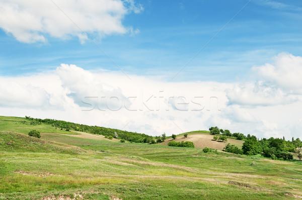 Terep kék ég tavasz fű természet tájkép Stock fotó © alinamd