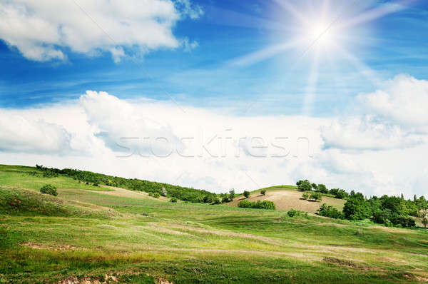 Terreno cielo blu cielo erba tramonto natura Foto d'archivio © alinamd