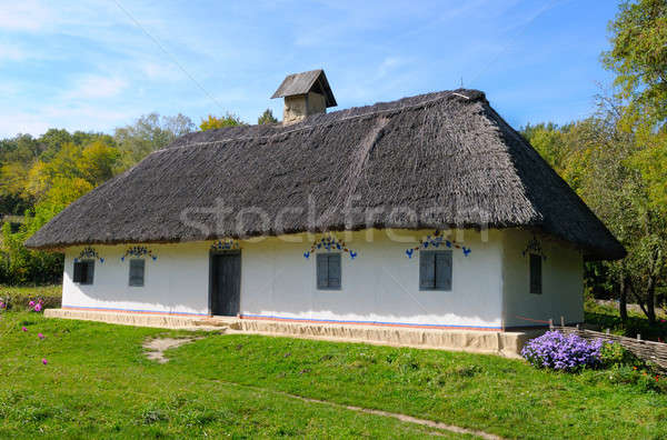 old farmhouse with a thatched roof Stock photo © alinamd