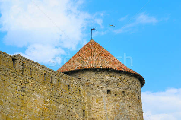 fortress tower with tiled roof on blue sky background Stock photo © alinamd