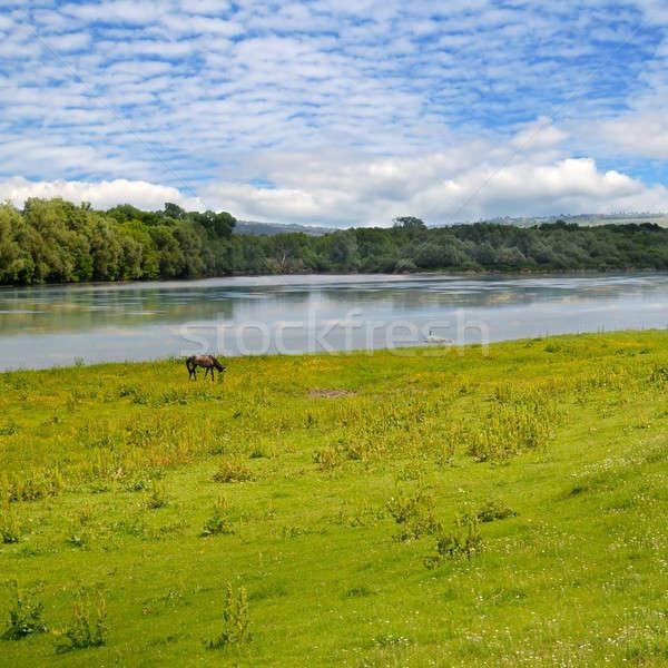 Plain river, meadow and sky Stock photo © alinamd