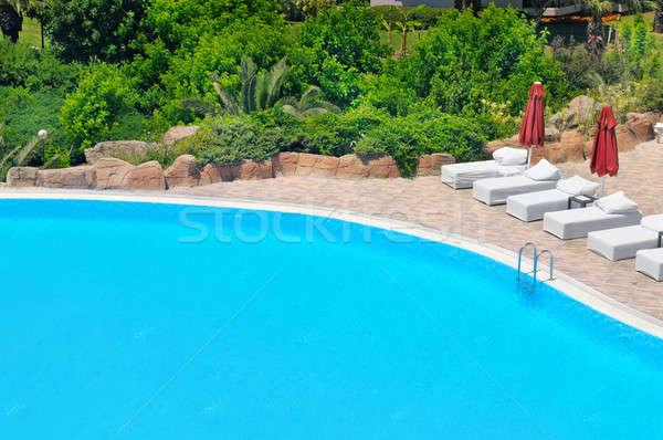 屋外 スイミングプール 豊かな 植生 ビーチ 水 ストックフォト © alinamd