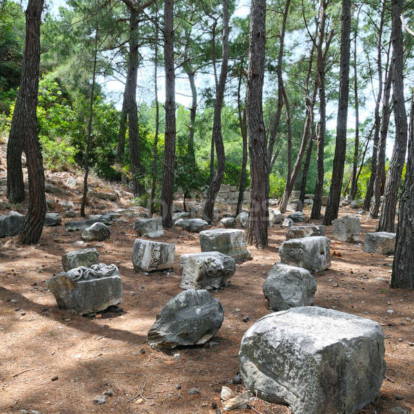 the ruins of the ancient city Stock photo © alinamd