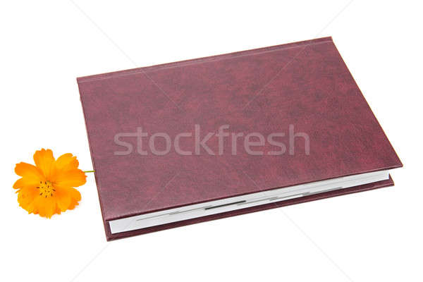 Zdjęcia stock: Książki · kwiat · odizolowany · biały · papieru · liści