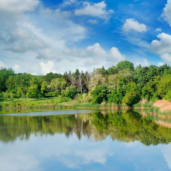Pittoreske meer bos banken hemel zomer Stockfoto © alinamd