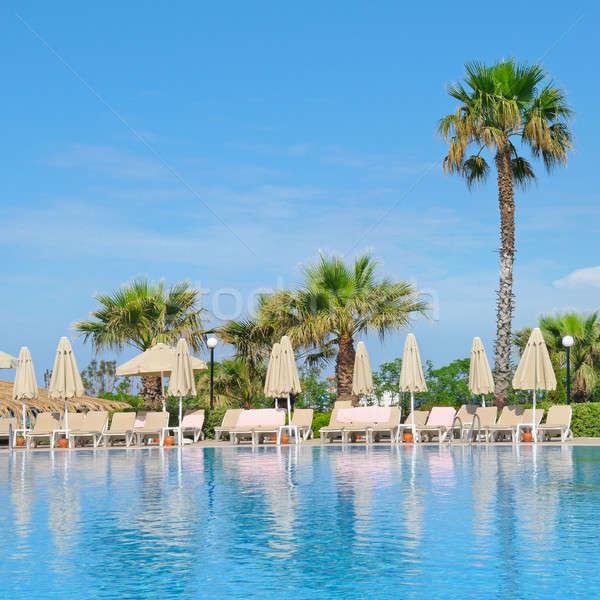 Outdoor zwembad palmbomen zon gezellig strand Stockfoto © alinamd