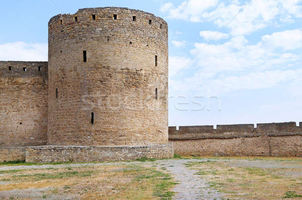 the ruins of a medieval fortress Stock photo © alinamd