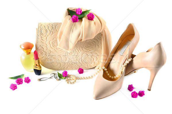 Ladies bag, shoes, jewelry, cosmetics and perfumes isolated on w Stock photo © alinamd