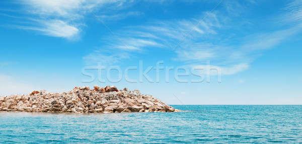 Masmavi deniz ada gökyüzü su manzara Stok fotoğraf © alinamd