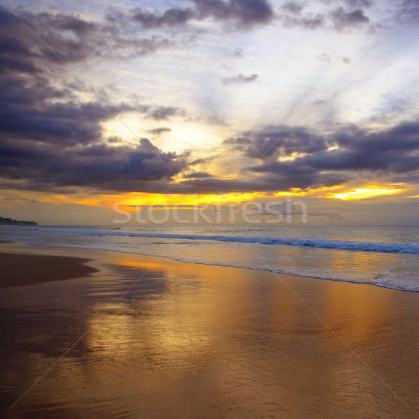 sunset and beach Stock photo © alinamd