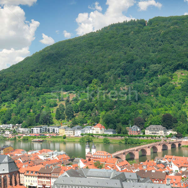 city in a mountain valley , top view Stock photo © alinamd