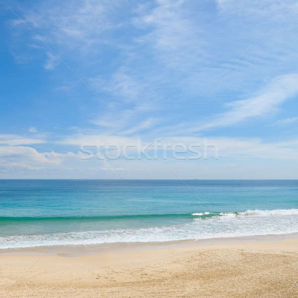 picturesque ocean coast and blue sky Stock photo © alinamd