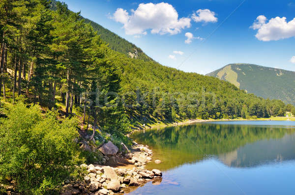 picturesque lake, mountains and blue sky Stock photo © alinamd