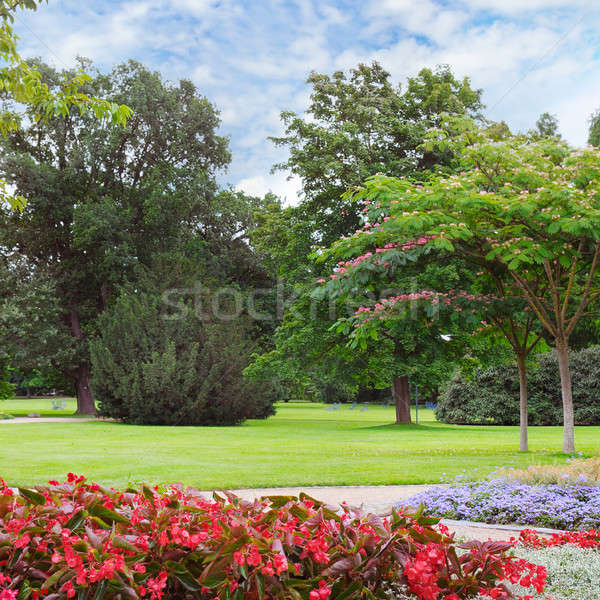 summer park with beautiful flowerbed Stock photo © alinamd
