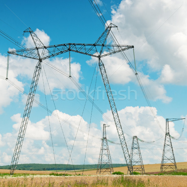 Power transmission line on a background of the cloudy sky Stock photo © alinamd