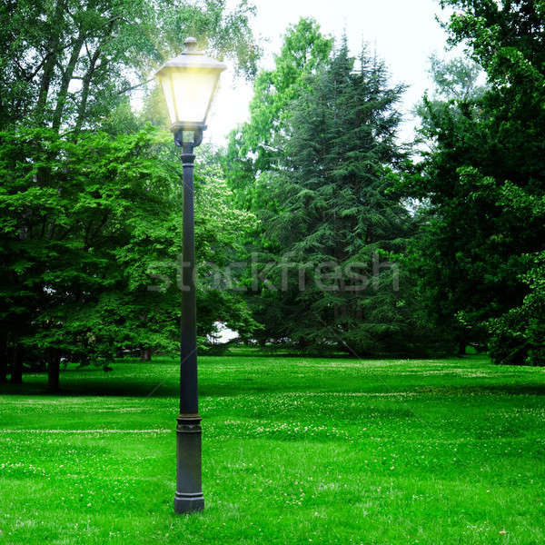 Stock photo: flashlight to illuminate the park