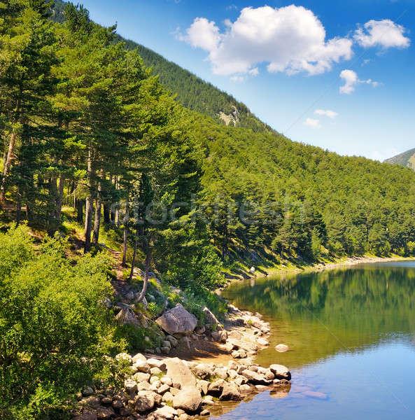 Pittoreske meer bergen blauwe hemel hemel boom Stockfoto © alinamd