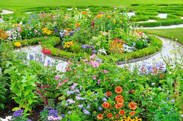 夏 花壇 緑 芝生 花 春 ストックフォト © alinamd