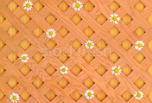 wood background, decorative grille and white daisies Stock photo © alinamd