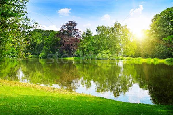 scenic lake in the summer park Stock photo © alinamd