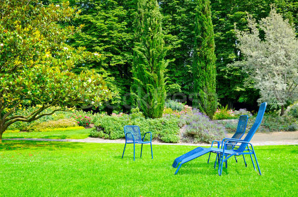 beautiful summer park with lawn and recliner Stock photo © alinamd