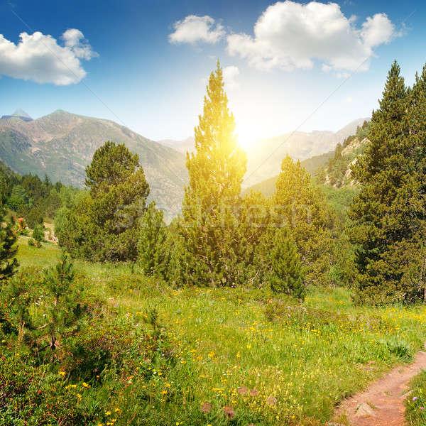 beautiful mountain landscape and sunrise Stock photo © alinamd