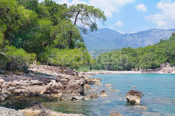 Montanhas pitoresco costa árvore primavera mar Foto stock © alinamd