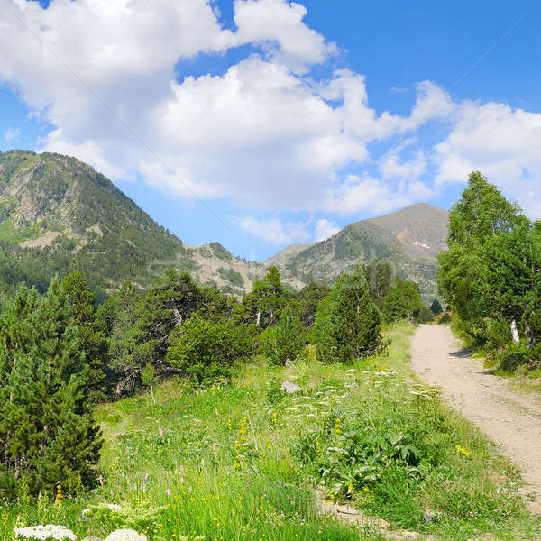 Stock photo: scenic mountains, meadows and blue sky