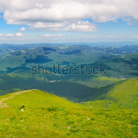 Mountain peaks of the Carpathians and blue sky Stock photo © alinamd