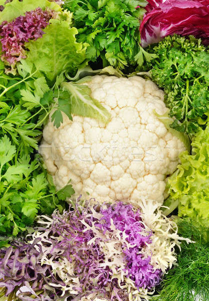 Pozostawia kapusta inny zielenina sałata charakter Zdjęcia stock © alinamd