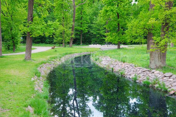 stream in the summer park Stock photo © alinamd
