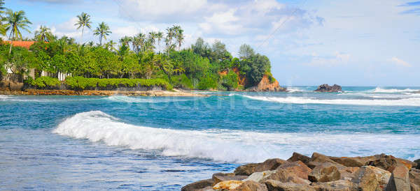 beautiful ocean, tropical palms on the shore and cloudy sky Stock photo © alinamd