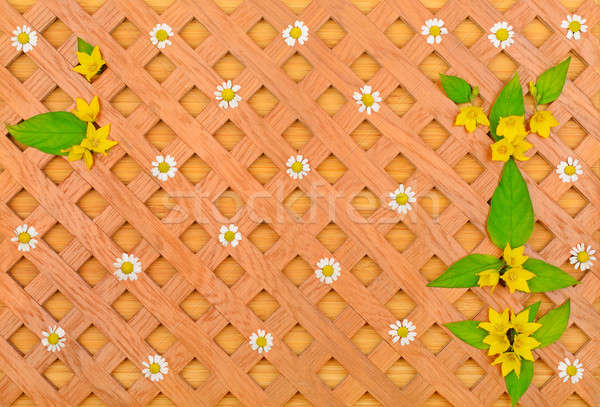 Сток-фото: древесины · декоративный · белый · Ромашки · шаблон