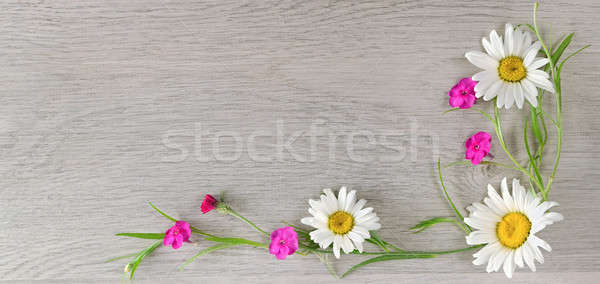 Flowers composition. Flat lay, top view Stock photo © alinamd