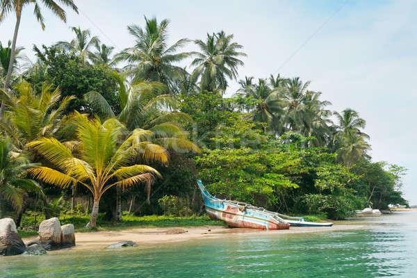 lake, palms and  boat Stock photo © alinamd